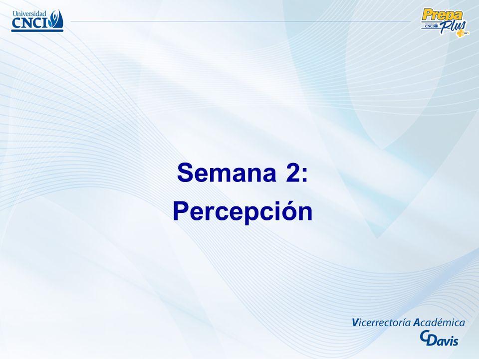Semana 2: Percepción