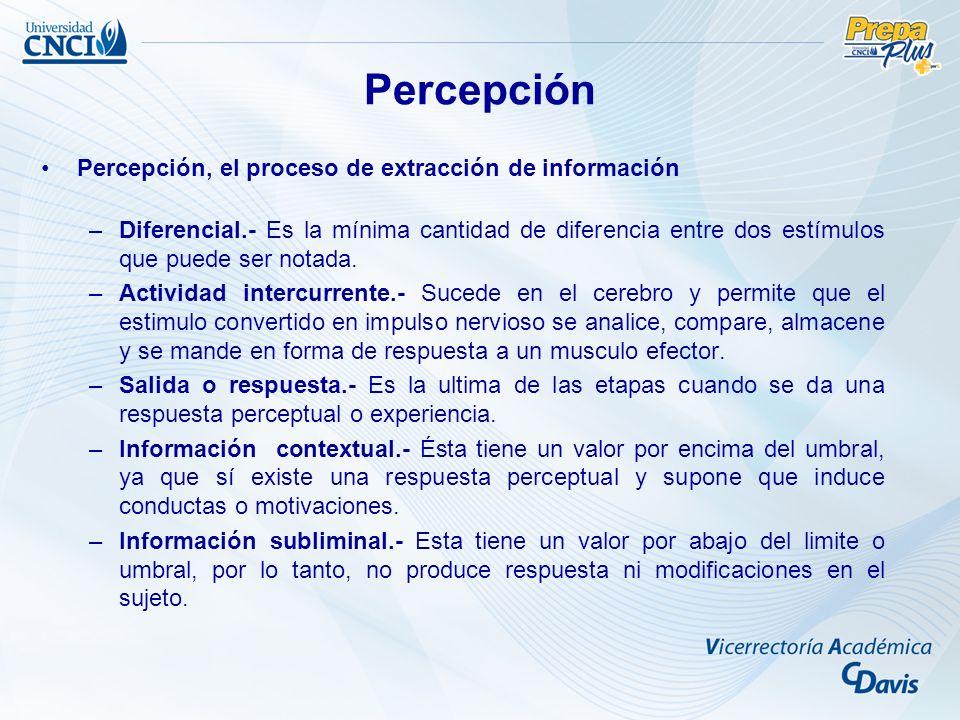 Percepción Percepción, el proceso de extracción de información