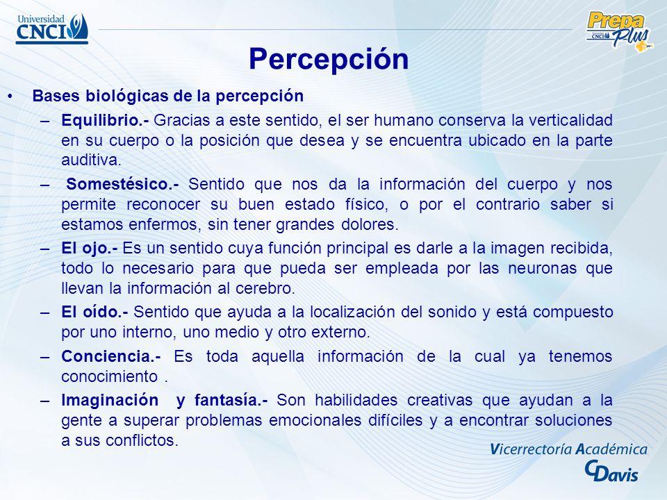 Percepción Bases biológicas de la percepción