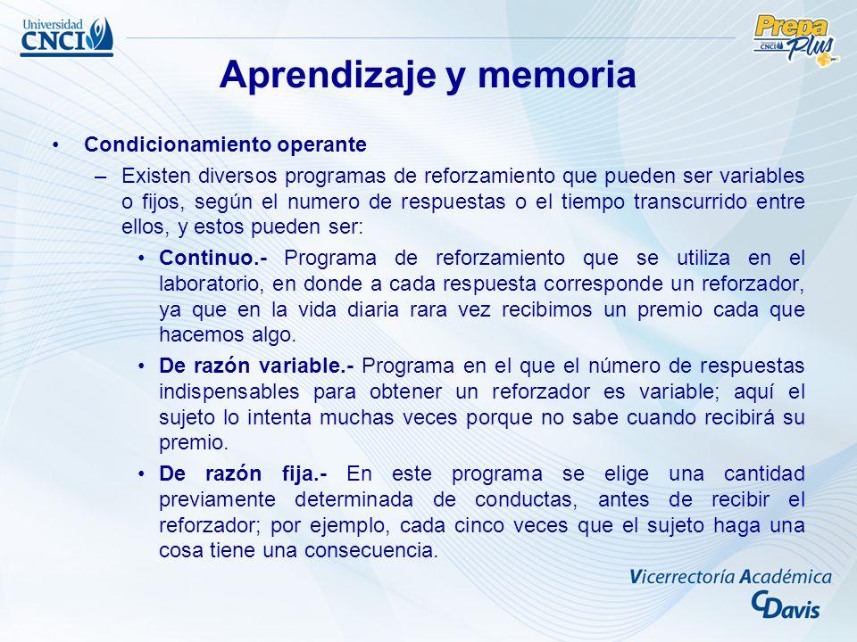 Aprendizaje y memoria Condicionamiento operante