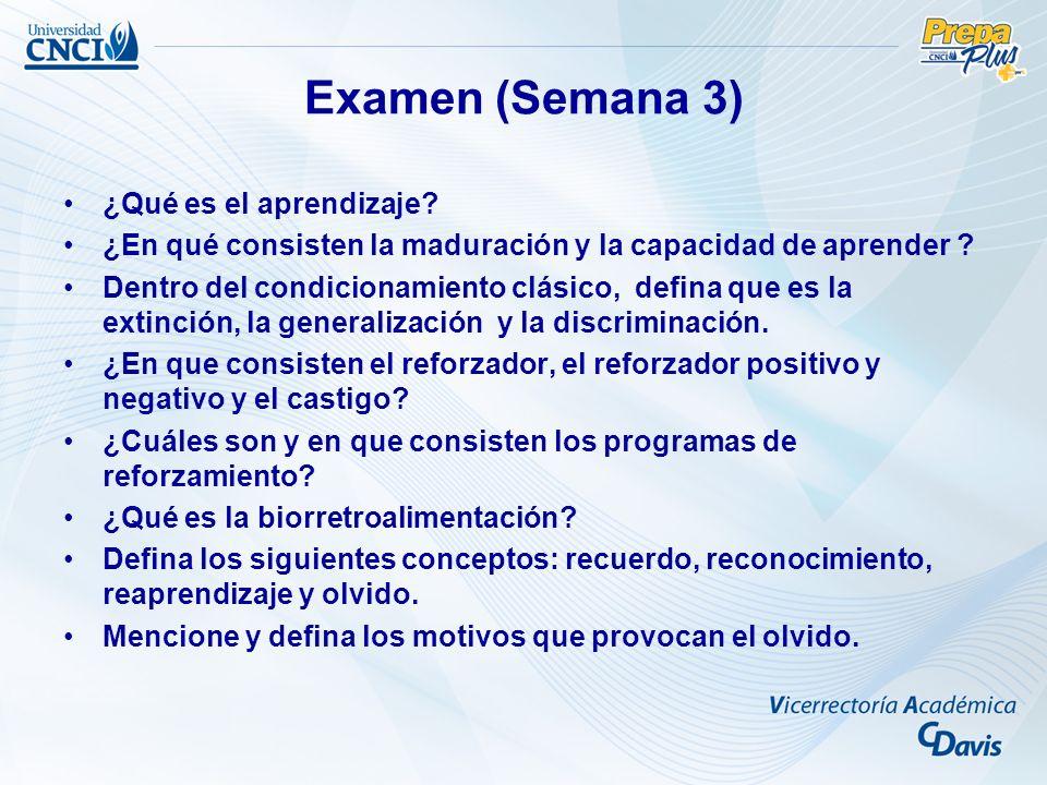 Examen (Semana 3) ¿Qué es el aprendizaje