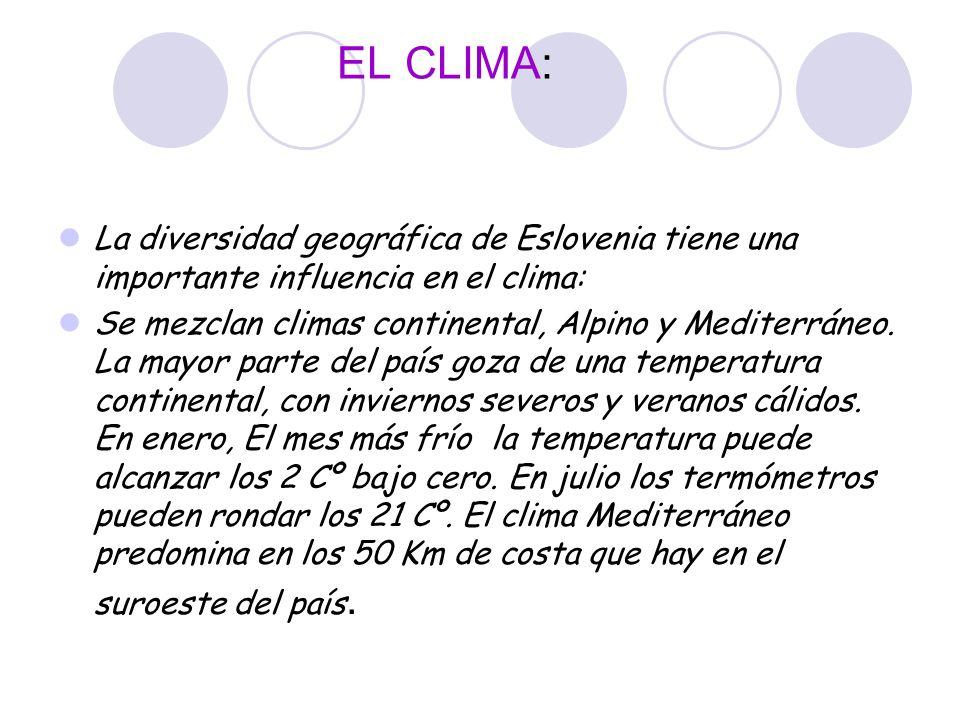 EL CLIMA: La diversidad geográfica de Eslovenia tiene una importante influencia en el clima: