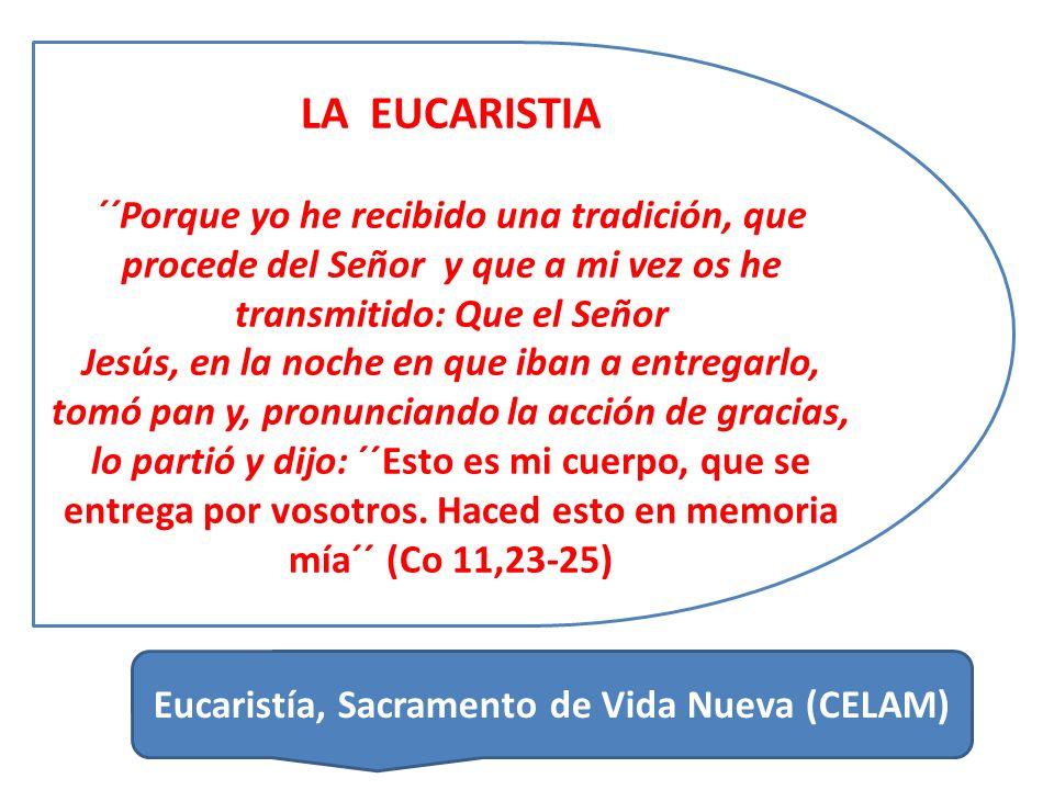 Eucaristía, Sacramento de Vida Nueva (CELAM)