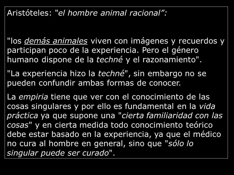 Aristóteles: el hombre animal racional :