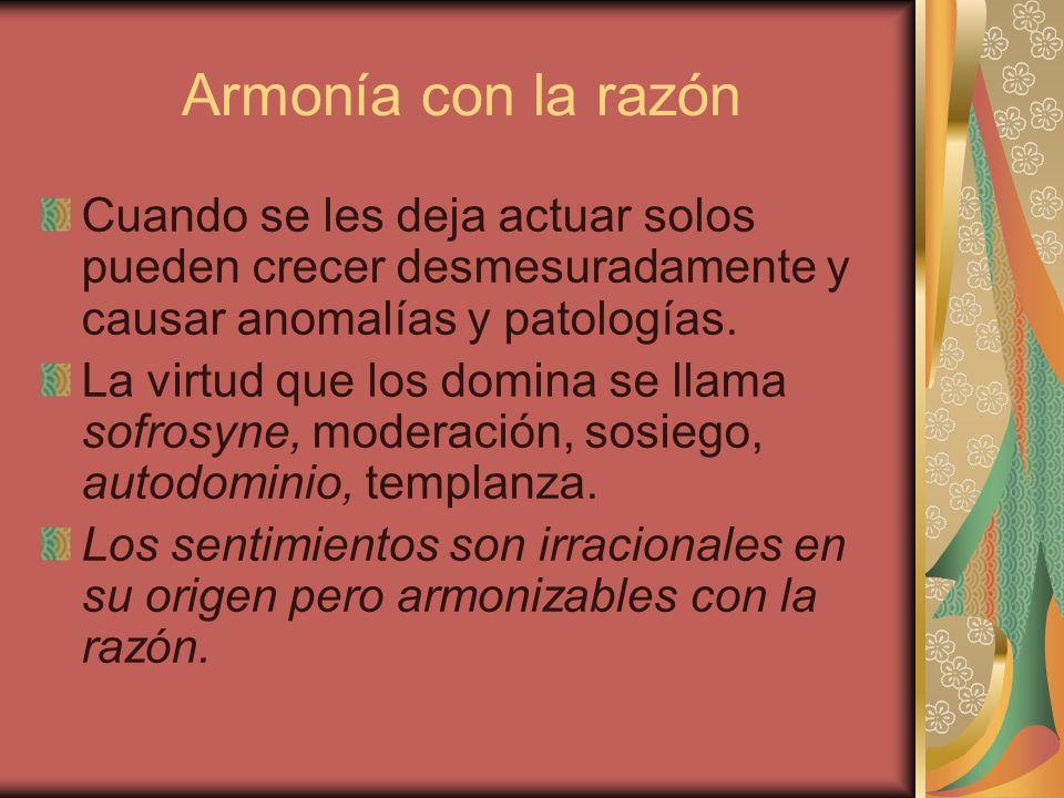 Armonía con la razón Cuando se les deja actuar solos pueden crecer desmesuradamente y causar anomalías y patologías.