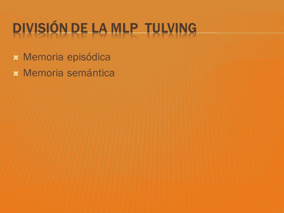 División de la MLP Tulving