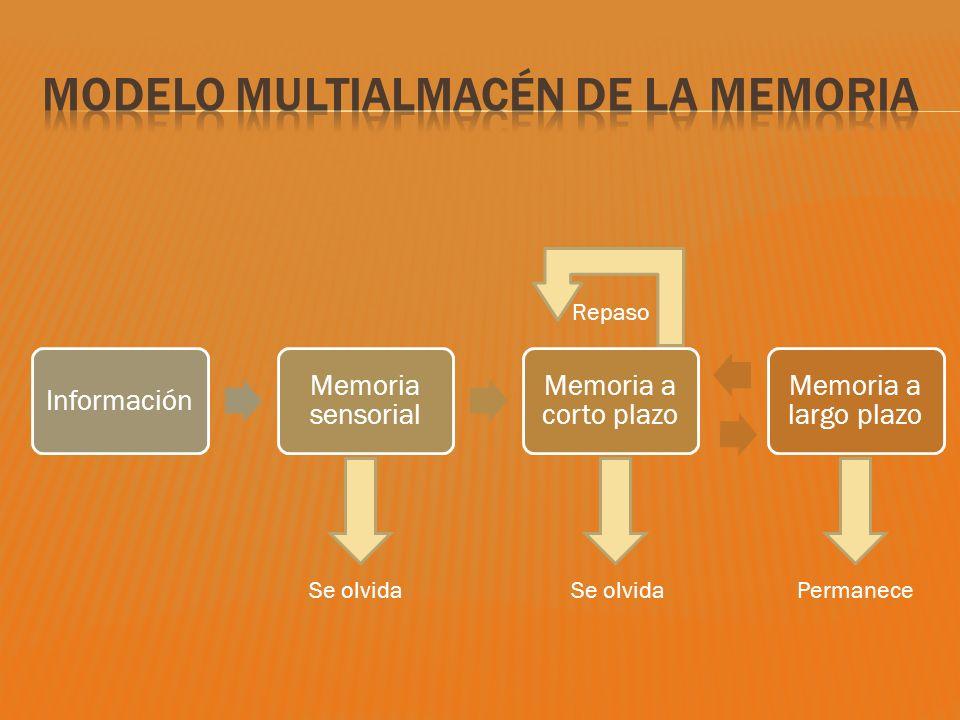 Modelo multialmacén de la memoria