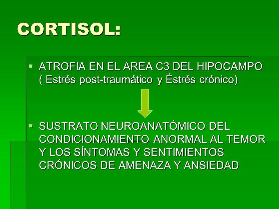 CORTISOL: ATROFIA EN EL AREA C3 DEL HIPOCAMPO ( Estrés post-traumático y Éstrés crónico)