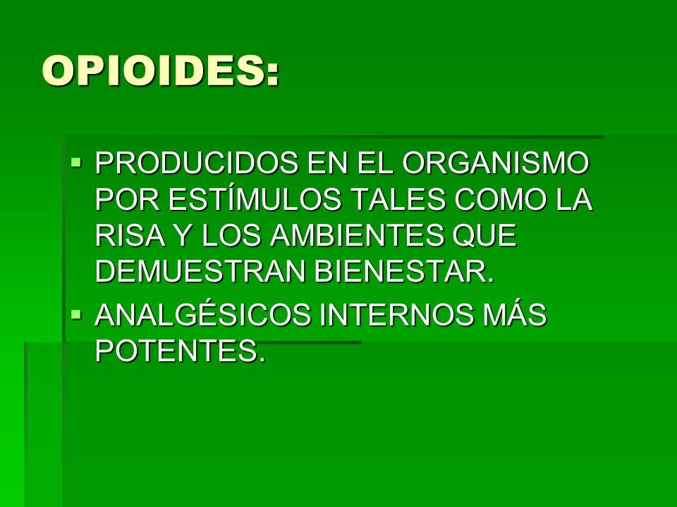 OPIOIDES: PRODUCIDOS EN EL ORGANISMO POR ESTÍMULOS TALES COMO LA RISA Y LOS AMBIENTES QUE DEMUESTRAN BIENESTAR.