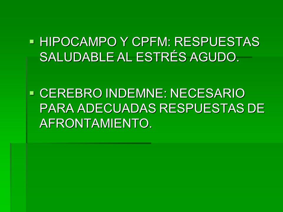 HIPOCAMPO Y CPFM: RESPUESTAS SALUDABLE AL ESTRÉS AGUDO.