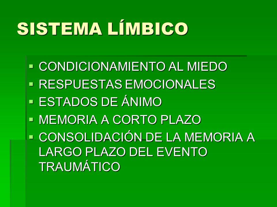 SISTEMA LÍMBICO CONDICIONAMIENTO AL MIEDO RESPUESTAS EMOCIONALES