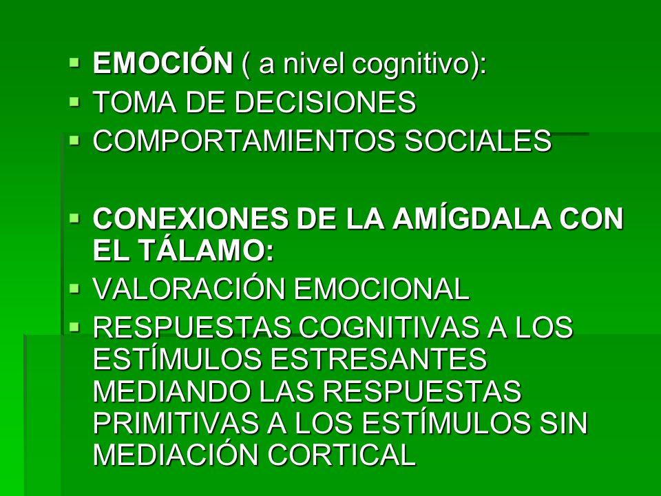 EMOCIÓN ( a nivel cognitivo):