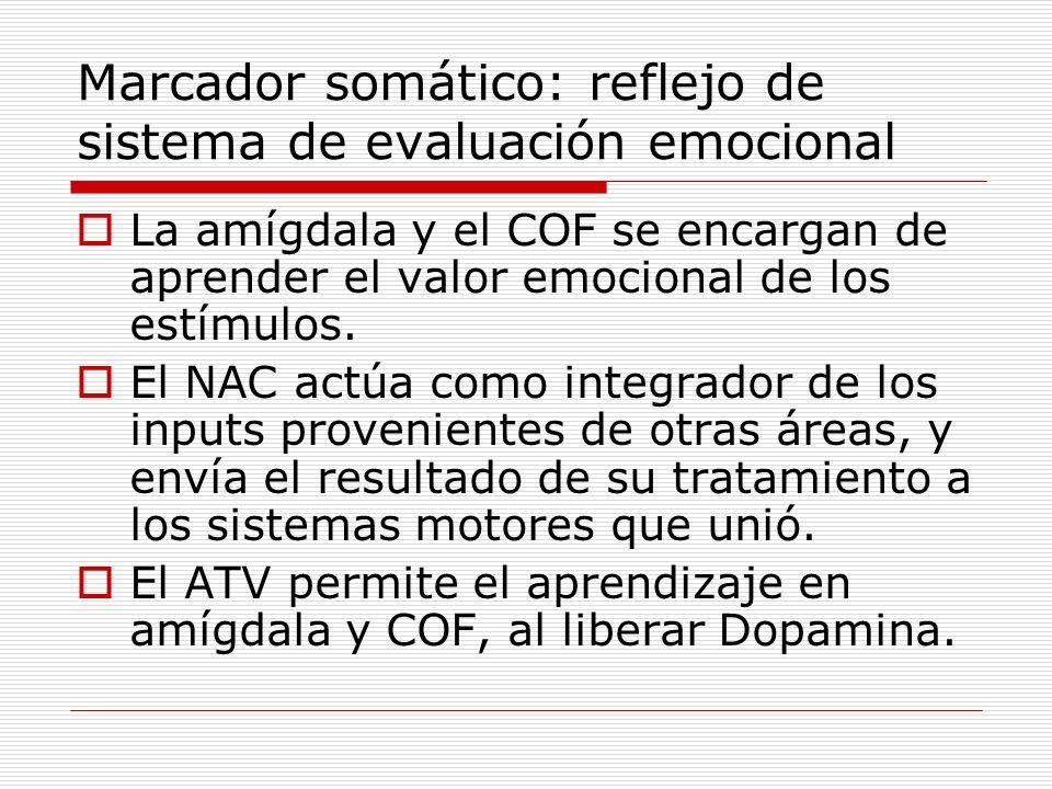 Marcador somático: reflejo de sistema de evaluación emocional