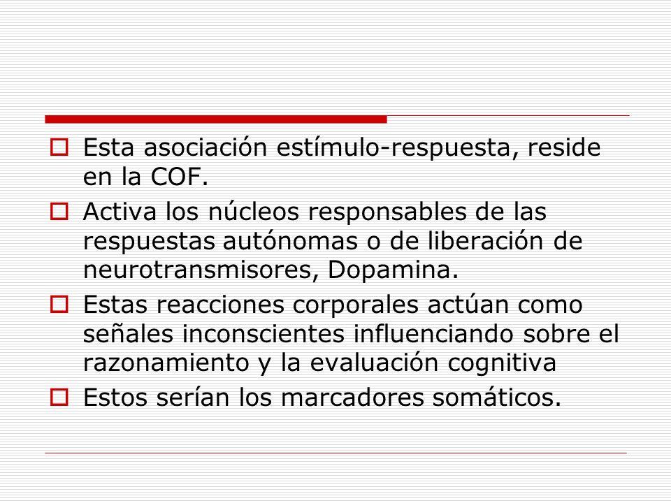 Esta asociación estímulo-respuesta, reside en la COF.