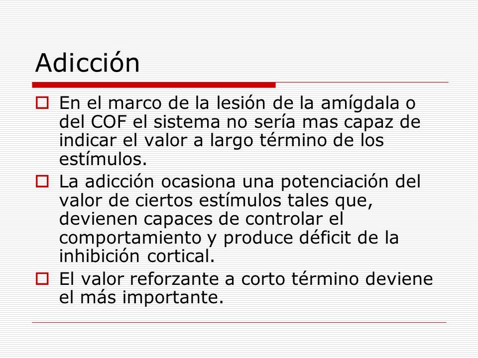 Adicción En el marco de la lesión de la amígdala o del COF el sistema no sería mas capaz de indicar el valor a largo término de los estímulos.