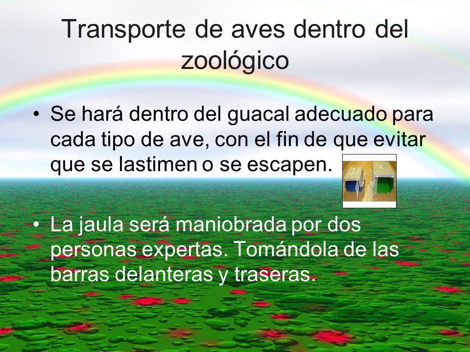 Transporte de aves dentro del zoológico