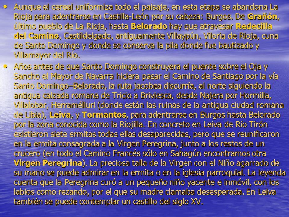 Aunque el cereal uniformiza todo el paisaje, en esta etapa se abandona La Rioja para adentrarse en Castilla-León por su cabeza: Burgos. De Grañón, último pueblo de La Rioja, hasta Belorado hay que atravesar Redecilla del Camino, Castildelgado, antiguamente Villaypún, Viloria de Rioja, cuna de Santo Domingo y donde se conserva la pila donde fue bautizado y Villamayor del Río.