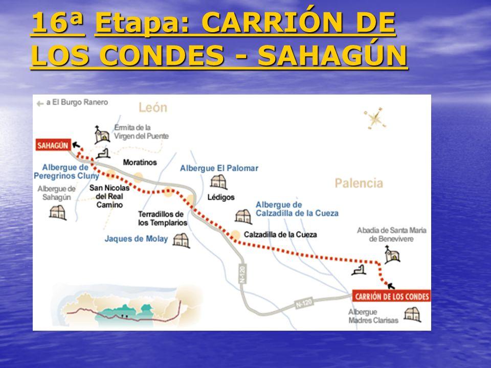 16ª Etapa: CARRIÓN DE LOS CONDES - SAHAGÚN