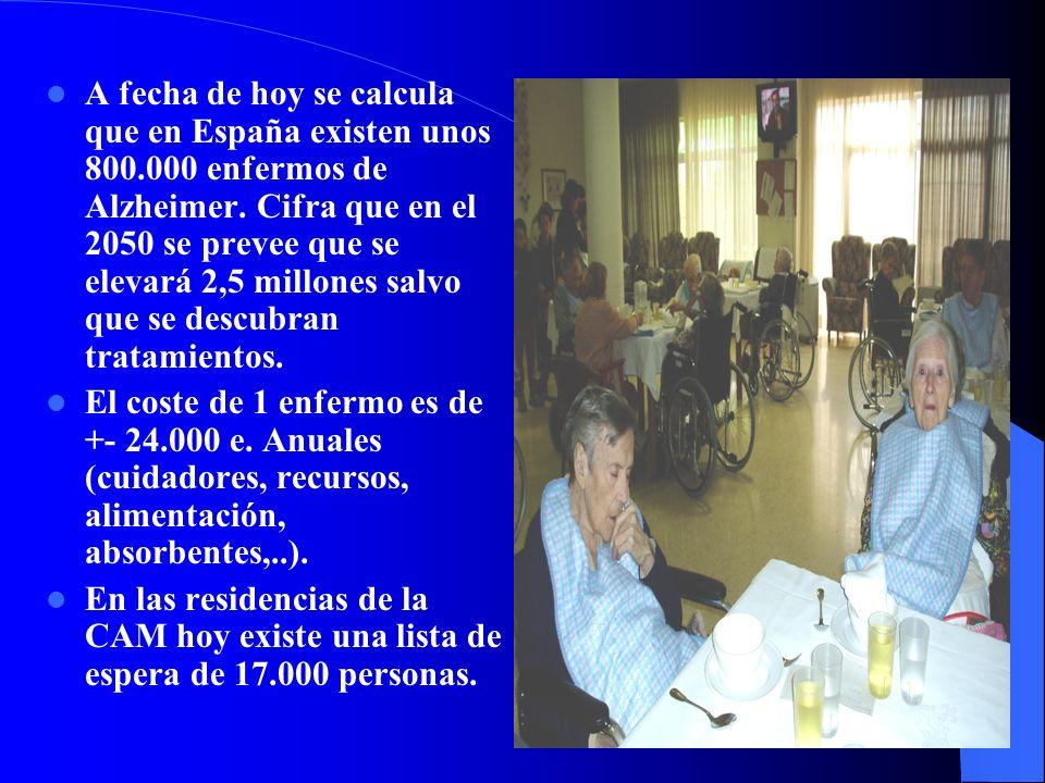 A fecha de hoy se calcula que en España existen unos 800