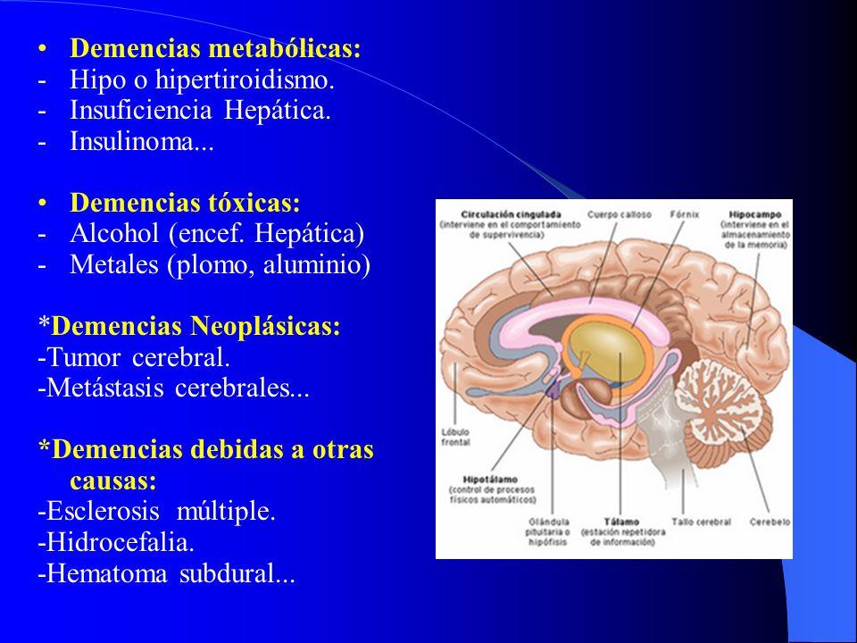 Demencias metabólicas: