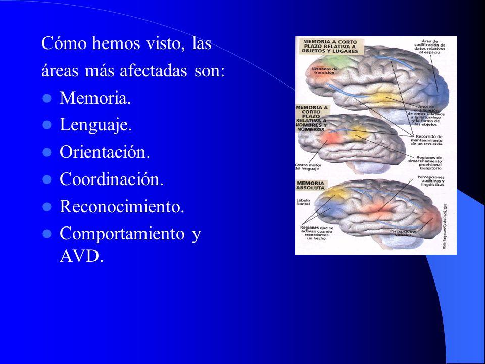 Cómo hemos visto, las áreas más afectadas son: Memoria. Lenguaje. Orientación. Coordinación. Reconocimiento.