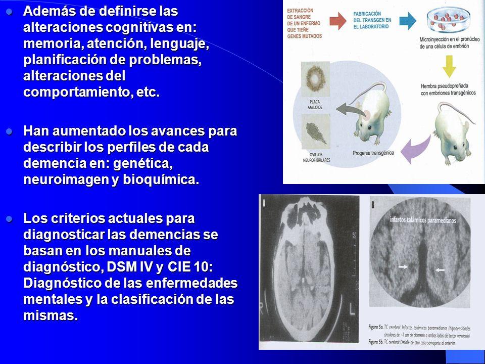 Además de definirse las alteraciones cognitivas en: memoria, atención, lenguaje, planificación de problemas, alteraciones del comportamiento, etc.