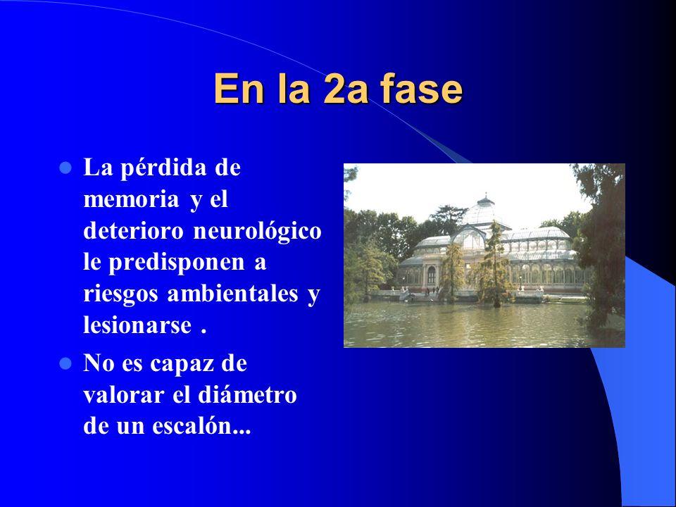 En la 2a fase La pérdida de memoria y el deterioro neurológico le predisponen a riesgos ambientales y lesionarse .