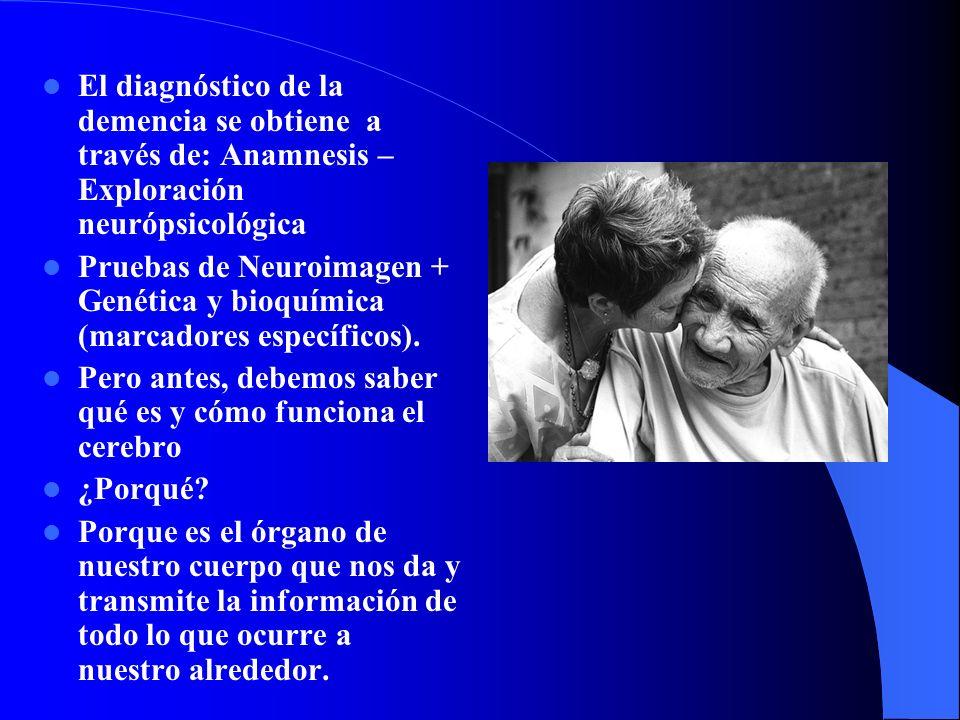 El diagnóstico de la demencia se obtiene a través de: Anamnesis – Exploración neurópsicológica