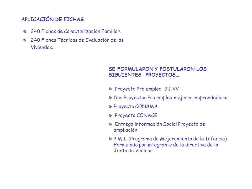 APLICACIÓN DE FICHAS. 240 Fichas de Caracterización Familiar. 240 Fichas Técnicas de Evaluación de las Viviendas.