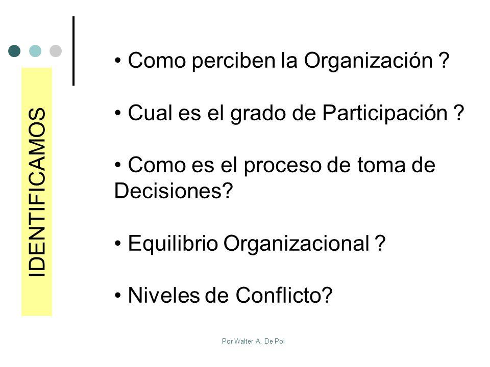 Como perciben la Organización Cual es el grado de Participación