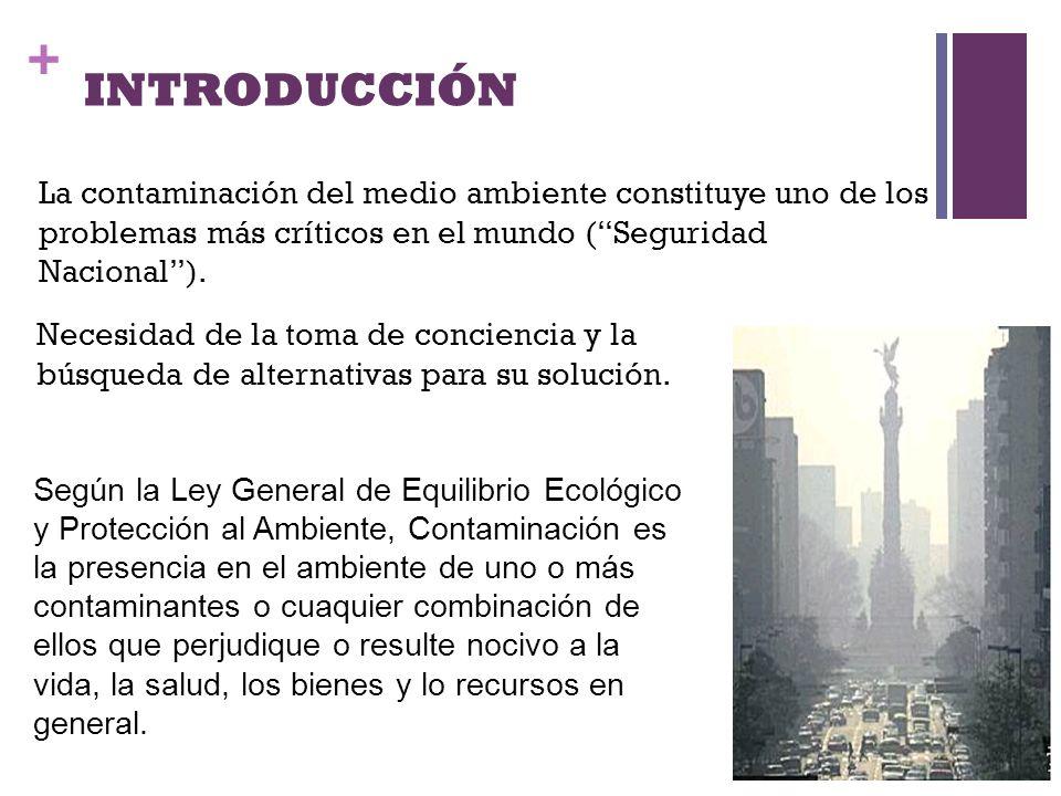 INTRODUCCIÓN La contaminación del medio ambiente constituye uno de los problemas más críticos en el mundo ( Seguridad Nacional ).