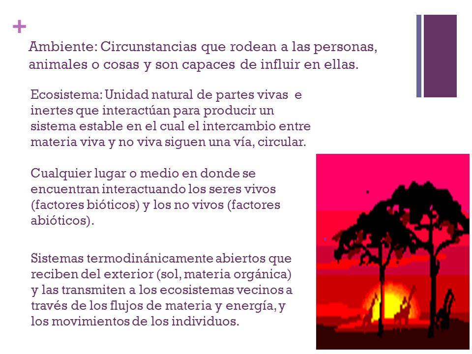 Ambiente: Circunstancias que rodean a las personas, animales o cosas y son capaces de influir en ellas.