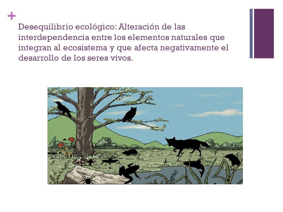 Desequilibrio ecológico: Alteración de las interdependencia entre los elementos naturales que integran al ecosistema y que afecta negativamente el desarrollo de los seres vivos.
