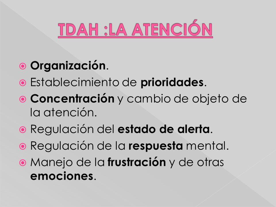 TDAH :LA ATENCIÓN Organización. Establecimiento de prioridades.