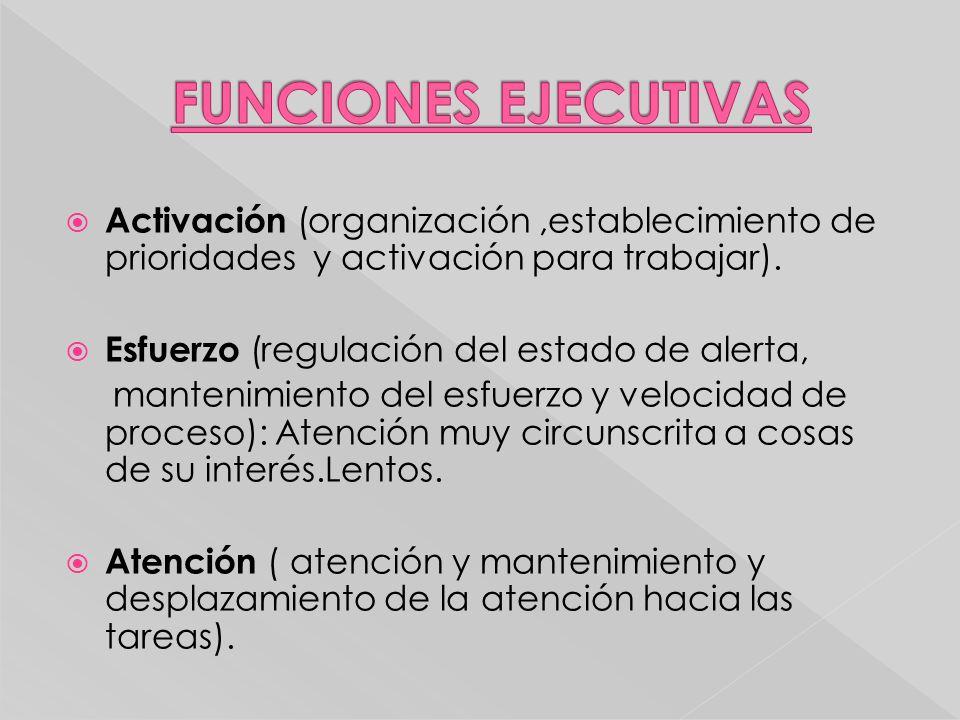 FUNCIONES EJECUTIVAS Activación (organización ,establecimiento de prioridades y activación para trabajar).