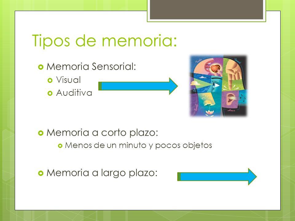 Tipos de memoria: Memoria Sensorial: Memoria a corto plazo:
