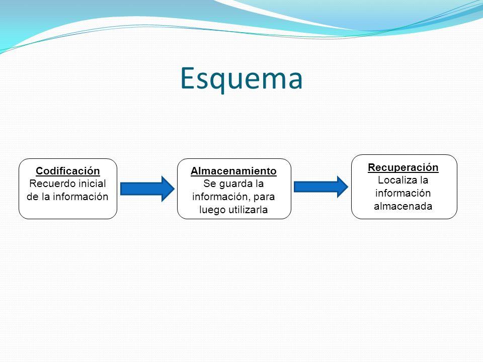 Esquema Recuperación Localiza la información almacenada Codificación