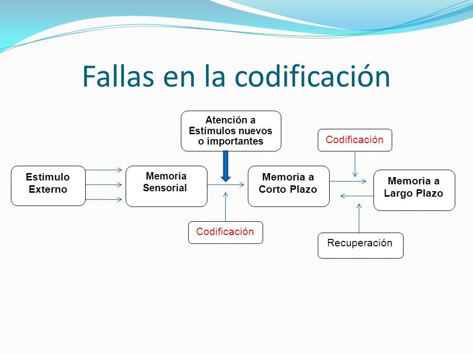 Fallas en la codificación