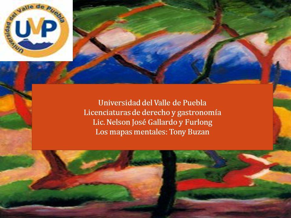 Universidad del Valle de Puebla Licenciaturas de derecho y gastronomía