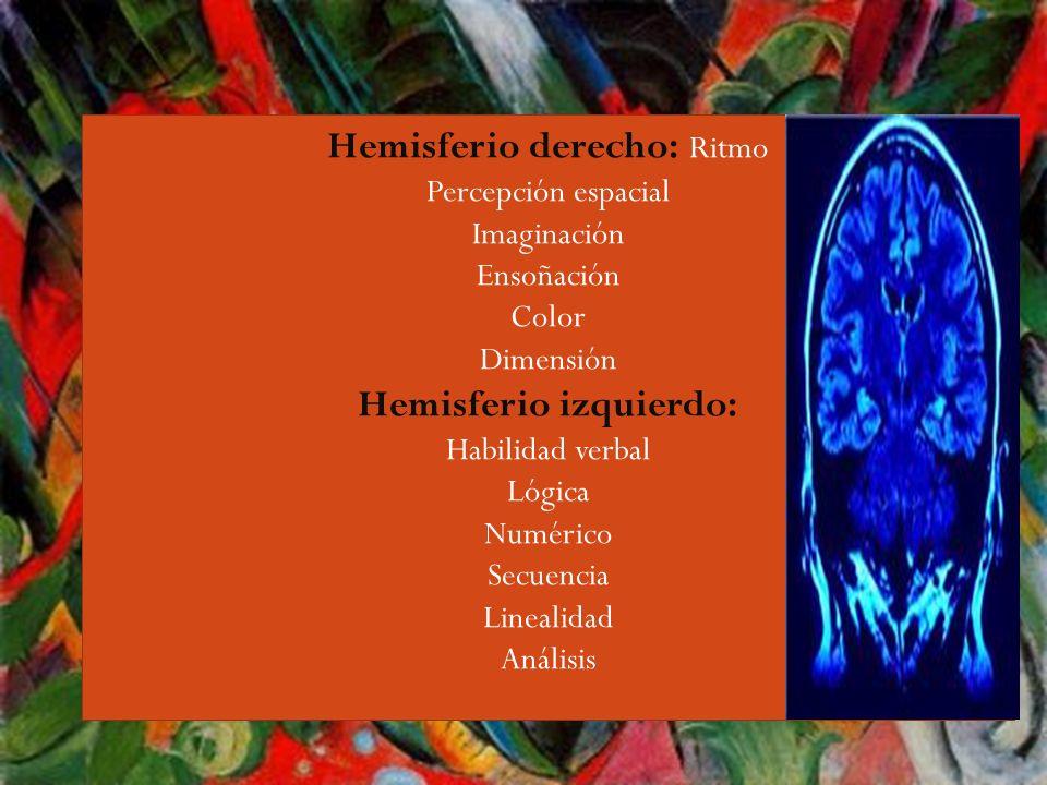 Hemisferio izquierdo: