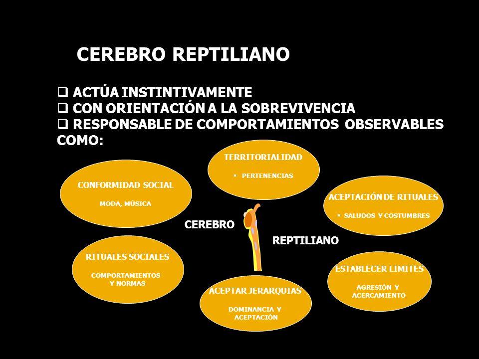 ACEPTACIÓN DE RITUALES