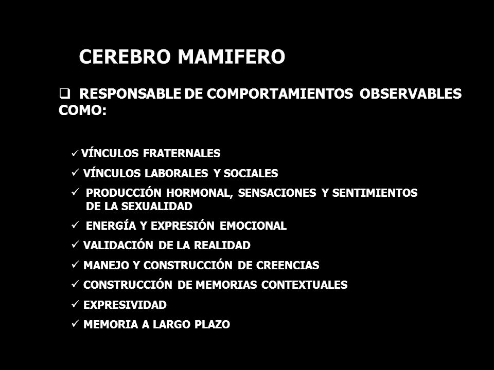 CEREBRO MAMIFERO RESPONSABLE DE COMPORTAMIENTOS OBSERVABLES COMO: