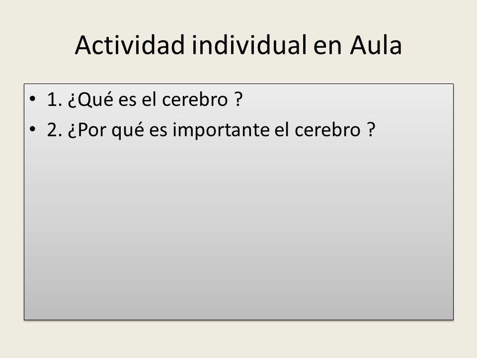 Actividad individual en Aula