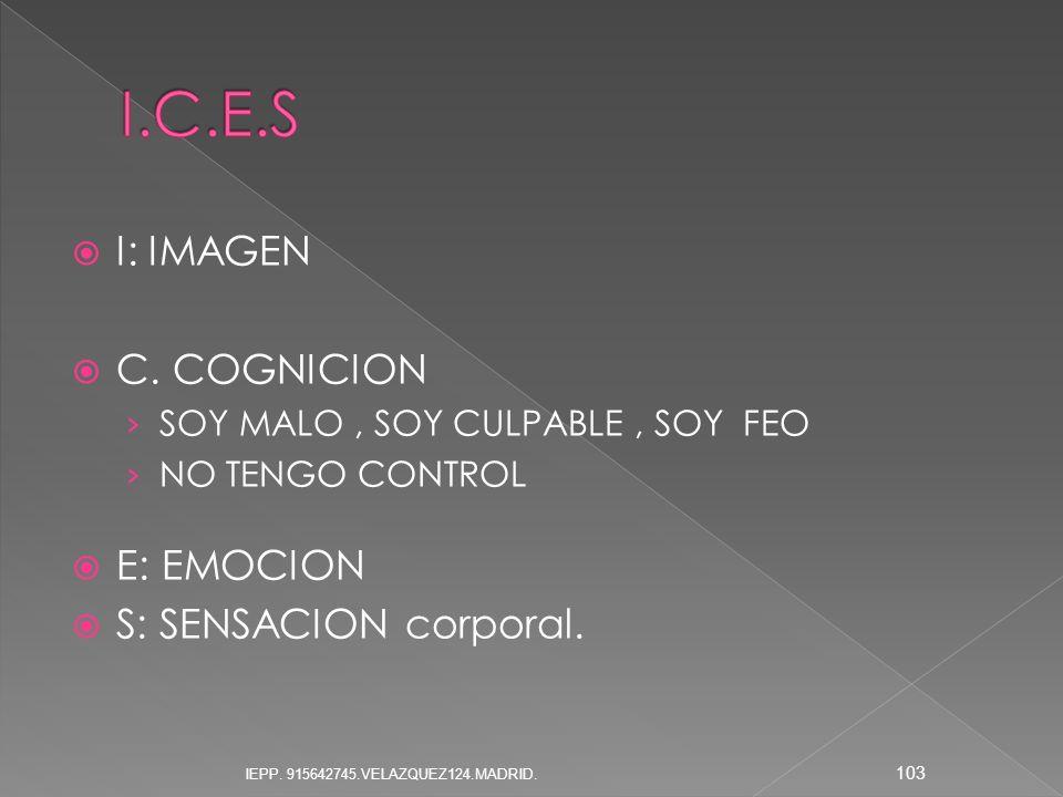 I.C.E.S I: IMAGEN C. COGNICION E: EMOCION S: SENSACION corporal.