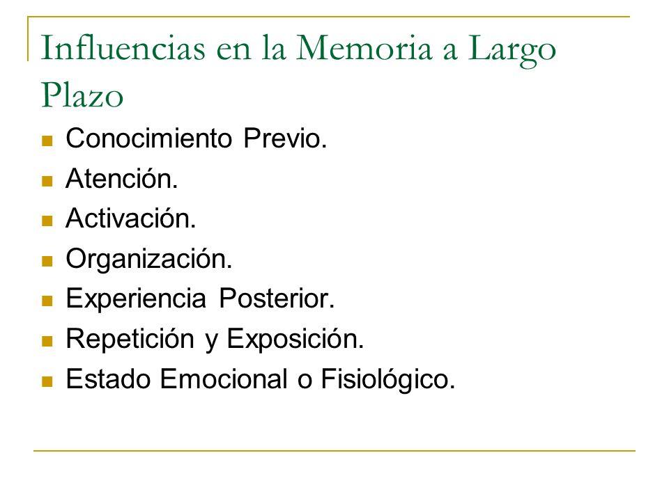 Influencias en la Memoria a Largo Plazo