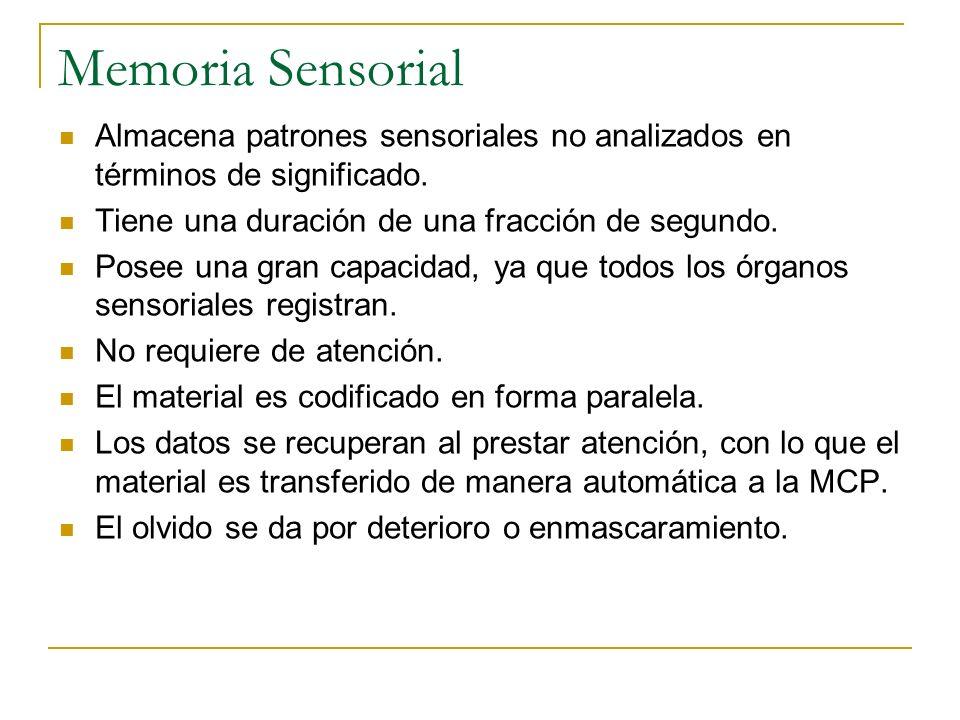 Memoria Sensorial Almacena patrones sensoriales no analizados en términos de significado. Tiene una duración de una fracción de segundo.