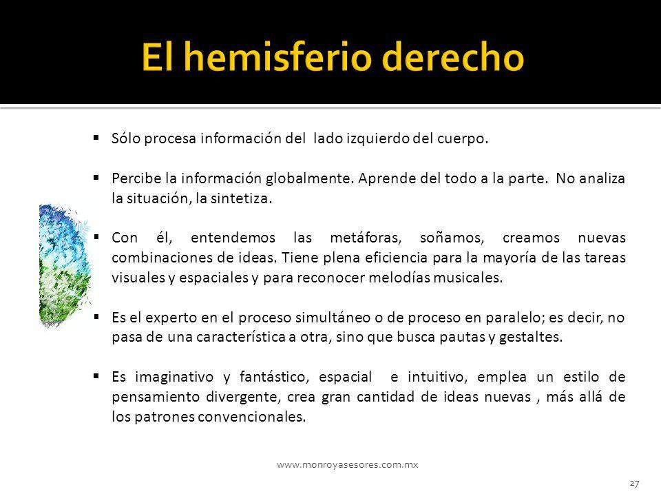 El hemisferio derecho Sólo procesa información del lado izquierdo del cuerpo.