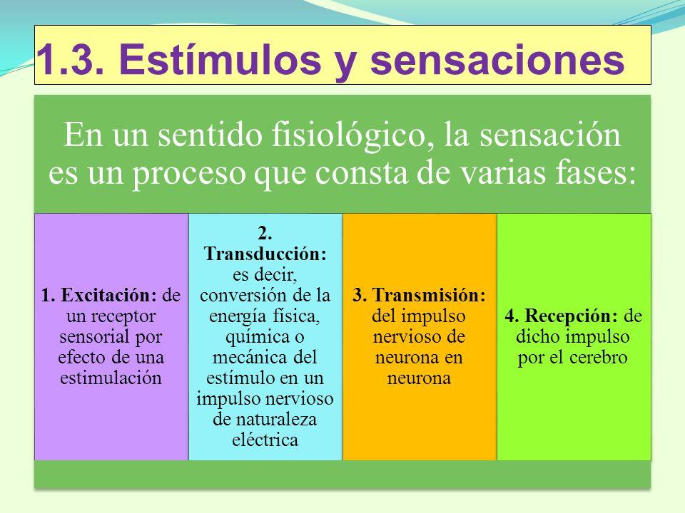 1.3. Estímulos y sensaciones
