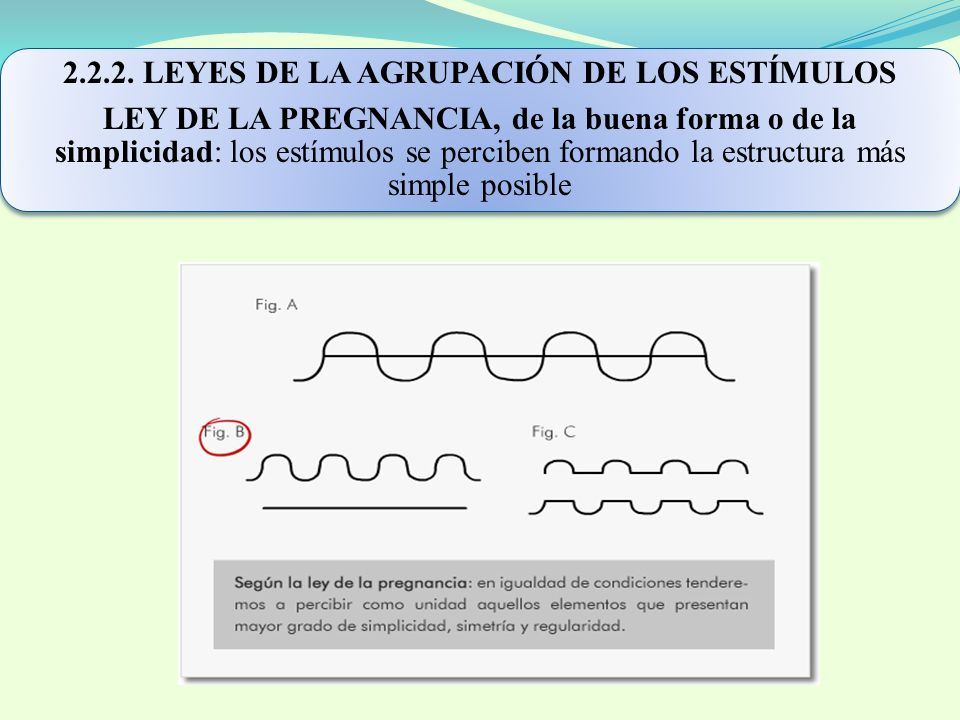 2.2.2. LEYES DE LA AGRUPACIÓN DE LOS ESTÍMULOS