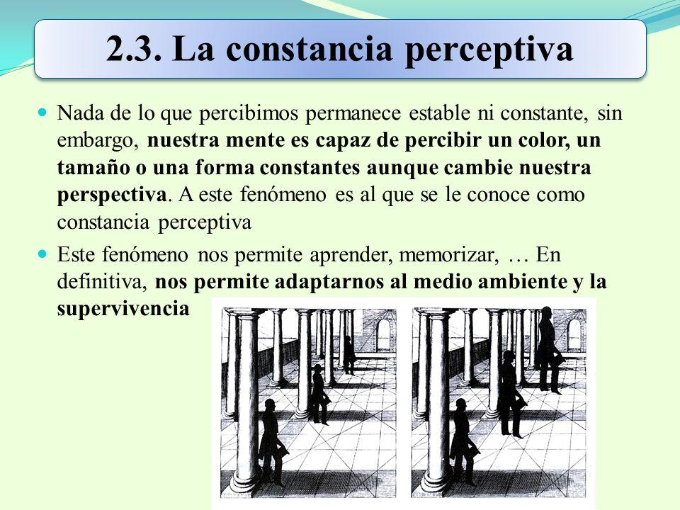 2.3. La constancia perceptiva
